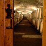 Envie d'une nouvelle cave à vin ? caveavin.site